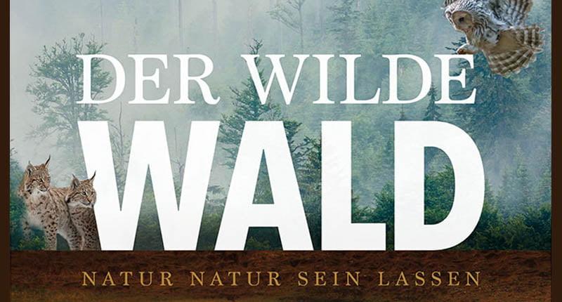 Film Dokumentation Tipp Der Wilde Wald